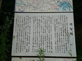 DSC_2623.JPG