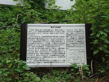 DSC_2770.JPG