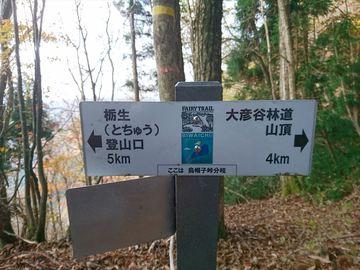 DSC_3735_R.JPG