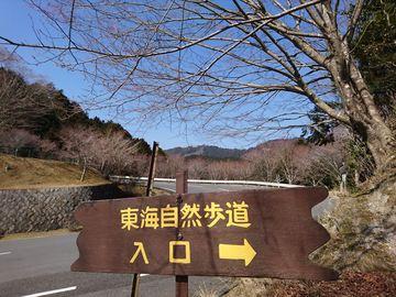 DSC_4766_R.JPG